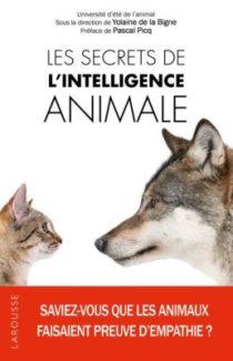 Les-secrets-de-l-intelligence-animale-258x400